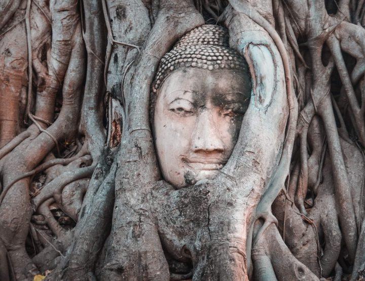 De tempels van Ayutthaya